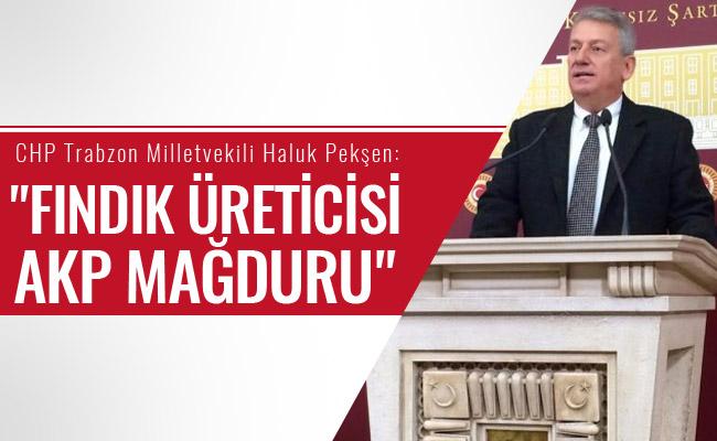 AKP Fındık Üreticisine Büyük İhanet Etmiştir