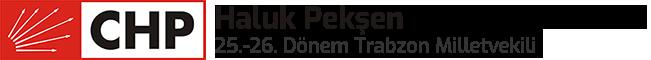 Haluk Peksen Site Logo